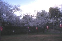 飯山城跡公園